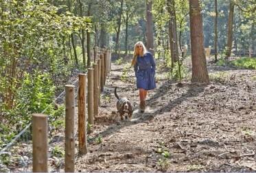 Tweede hondenlosloopzone aan Molsekiezel